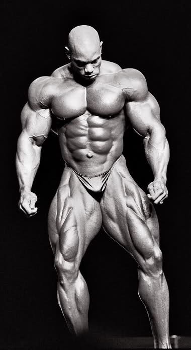 Mr. Flex Wheeler